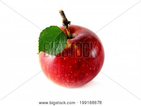 Red apple isolated on white background. Concept - healthy fruits from your garden.