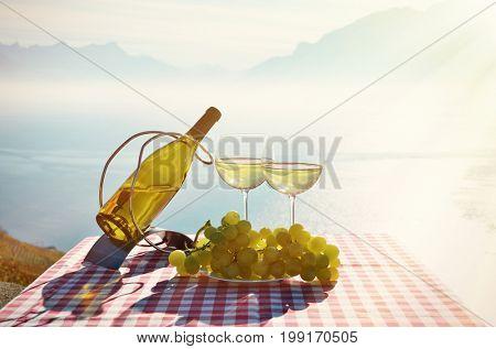 Wine and grapes. Geneva lake, Switzerland