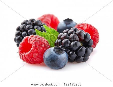 Mix berries in closeup with leaf