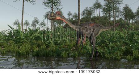 3d rendering of the walking gigantoraptor