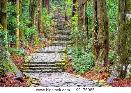The Kumano Kodo trail, a sacred trail in Nachi, Wakayama, Japan.