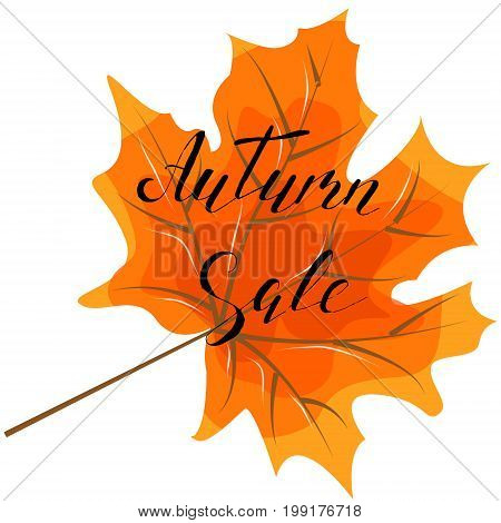 Autumn sale hand lettering quotes.Modern motivation calligraphy typography for the poster invitations greeting cards.Vector design lettering