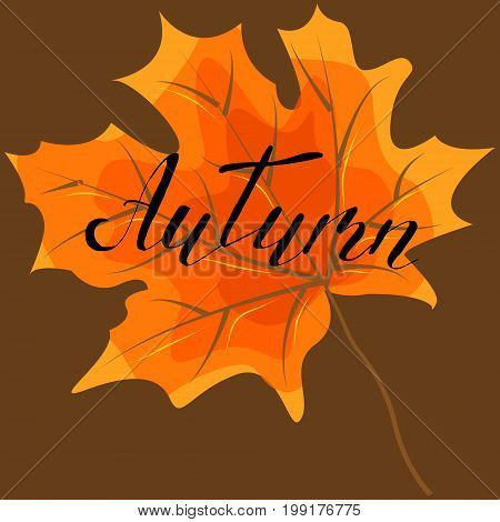 Autumn hand lettering quotes.Modern motivation calligraphy typography for the poster invitations greeting cards.Vector design lettering