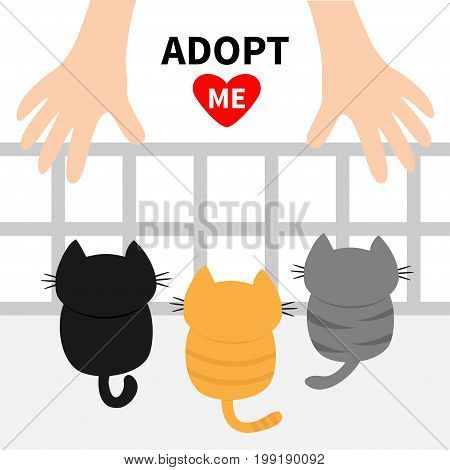 Adopt me. Three kittens looking up to human hand. Nursery cage aviary. Cute cartoon funny character. Animal hug. Helping hands concept. Red heart. Flat design White background Isolated Vector