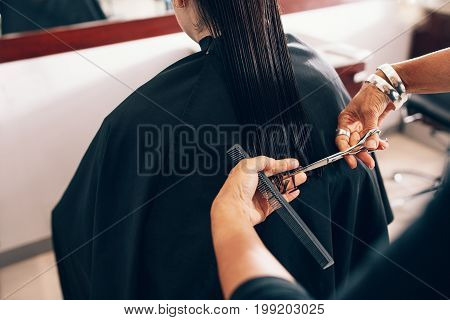 Hair stylist cutting the hair to a straight level. Hairdresser using comb and scissors for a hair cut.