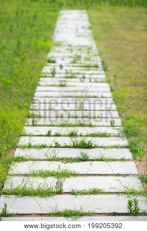 Stone footpath with growing grass, Chengdu, China