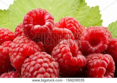 raspberry isolated, raspberries, white, background, fruit food