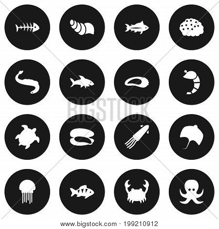 Collection Of Shark, Tortoise, Acne And Other Elements.  Set Of 16 Food Icons Set.