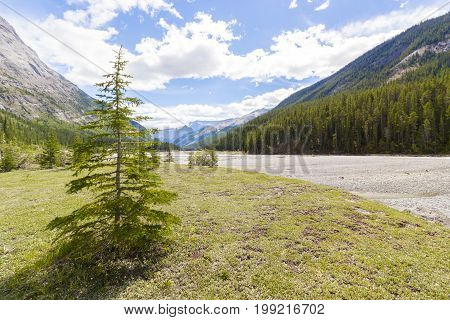 athabasca river view west canada british columbia