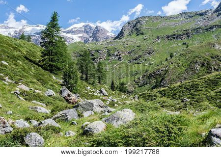 View of Gressoney Valley (Monte Rosa) in Italy