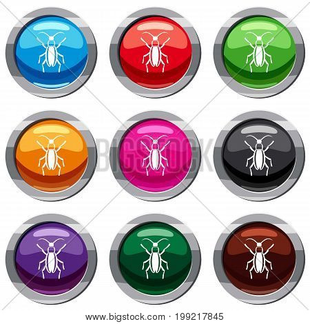 Beetle bug set icon isolated on white. 9 icon collection vector illustration