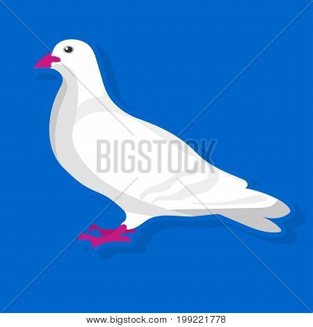 Vector illustration of simple white bird sitting on the blue background.