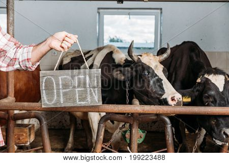 Farmer With Open Sign In Cowshed