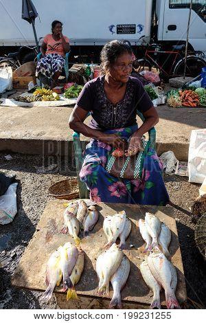 Fishing Market In Colombo, Sri Lanka