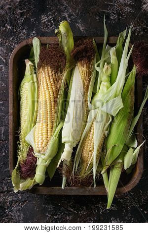 Young raw uncooked corn cobs in leaves in old oven tray. Top view over dark brown concrete texture background.