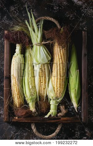 Young raw uncooked corn cobs in leaves in wooden tray. Top view over dark brown concrete texture background.