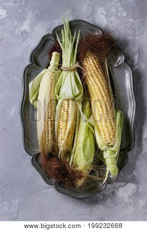 Young raw uncooked corn cobs in leaves on vintage metal plate. Top view over light gray concrete texture background.