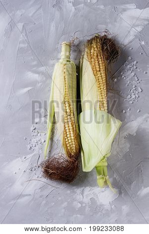 Young raw uncooked corn cobs in leaves. Top view over light gray concrete texture background. Copy space