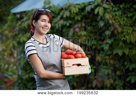 Photo of agronomist girl with red tomatoes in box at country