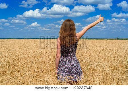 Back View Of Beautiful Young Woman In Dress Walking In Golden Wheat Field And Pointing One Finger Up