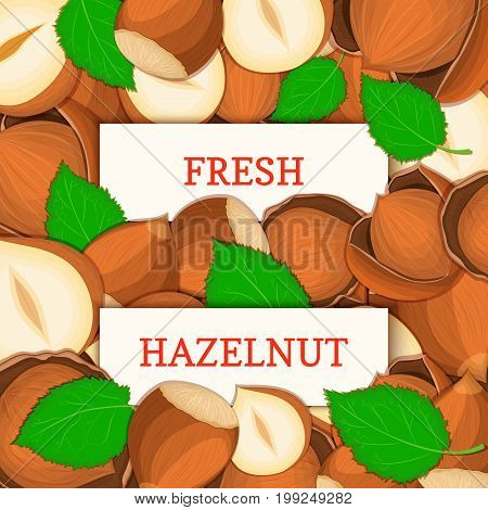 Two white rectangle label on hazelnut fruit background. Vector card illustration. Nutty pattern walnut nut whole and slice leaves for design of food packaging breakfast detox diet, vegan