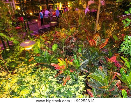 Barcelona, Spain - September, 9 2015: The Central Park at cruise ship Allure of the Seas by Royal Caribbean Royal Caribbean, Allure of the Seas sailing from Barselona on September 9, 2015.