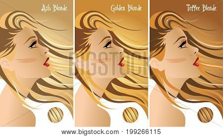 Blonde hair colors chart with three different blonde tones