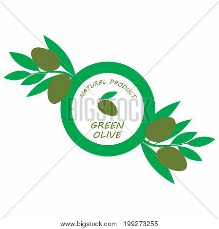 Isolated olives branch for logo, illustration or symbol template