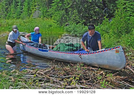 Clearing The Beaver Dam