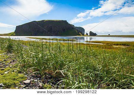 north coast of dyrholaey skaftafellssysla iceland in summer