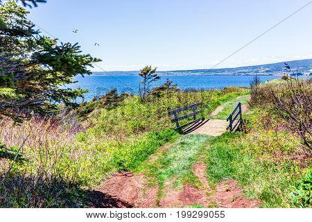 Trail Hiking In Bonaventure Island By Perce, Quebec In Gaspe, Gaspesie Region With Small Wooden Brid