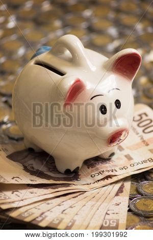 cute piggy bank with cash and coins