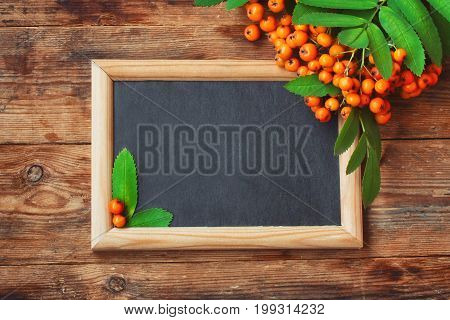 Bunch of rowan branch blackboard in frame on wooden pile autumn composition space for text rustic style