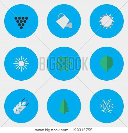 Elements Corn, Blossom, Bailer And Other Synonyms Hot, Flower And Wineglass.  Vector Illustration Set Of Simple Garden Icons.