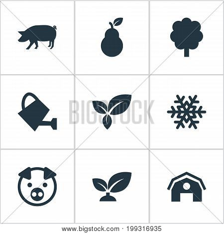 Elements Soil, Duchess, Swine And Other Synonyms Duchess, Winter And Life.  Vector Illustration Set Of Simple Ecology Icons.