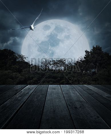 Old wooden table over tree moon bird and spooky cloudy sky Horror background Halloween concept
