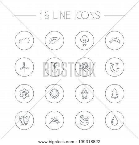 Collection Of Recycle, Plant, Penguin And Other Elements.  Set Of 16 Natural Outline Icons Set.