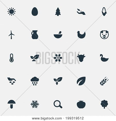 Elements Bacteria, Foliage, Pitcher And Other Synonyms Thermometer, Protection And Germs.  Vector Illustration Set Of Simple  Icons.