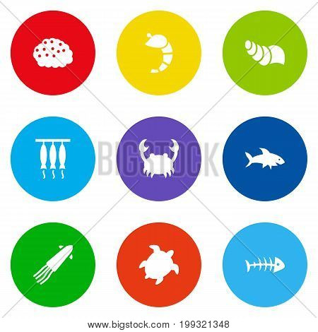 Collection Of Lobster, Calamary, Smoked And Other Elements.  Set Of 9 Food Icons Set.