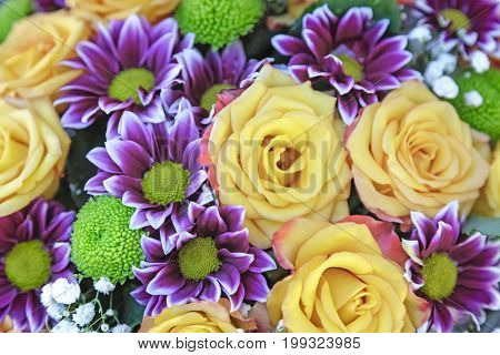 A large bouquet of beautiful yellow roses and purple chrysanthemums. Presented by close up, top view.