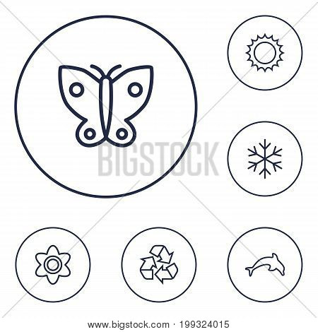 Collection Of Recycle, Butterfly, Dolphin And Other Elements.  Set Of 6 Nature Outline Icons Set.