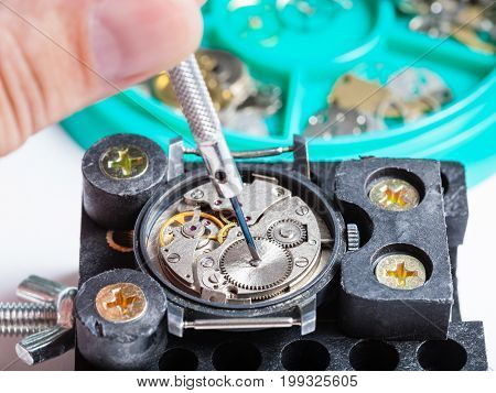 Repairing Of Wristwatch In Holder With Screwdriver