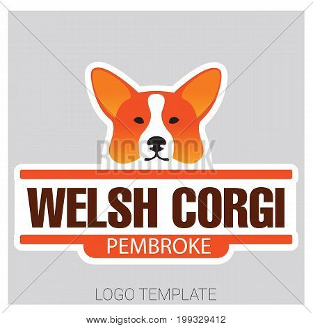 Colorful vector drawing of dog head of Welsh Corgi breed