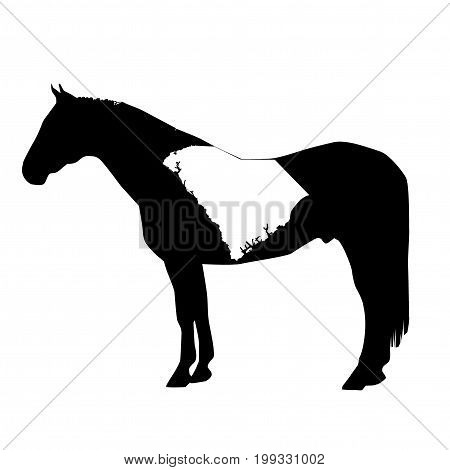 Vector Horse Silhouette With South Carolina Boundary Patch Illustration