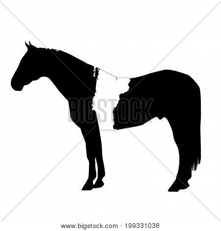 Vector Horse Silhouette With Vermont Boundary Patch Illustration