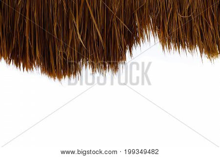 closeup of thatch roof isolated on white background - palm roof