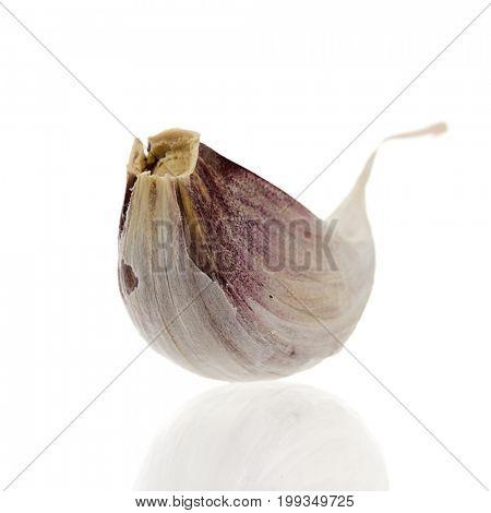Close-up of garlic clove on white background.