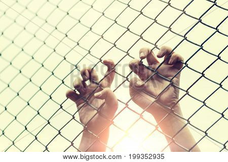 Hand with metal fence feeling no freedom
