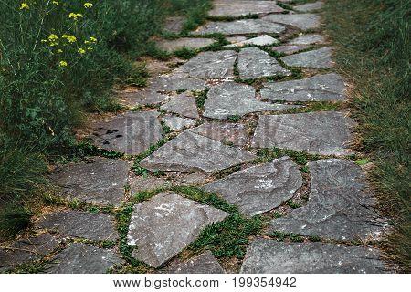 Textured Stone footpath among Dense green grass