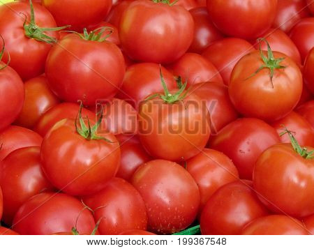Red tomatoes on bazaar in St. Jacobs Village Ontario Canada